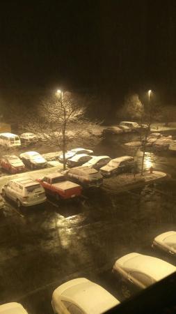 Buffalo Grove照片