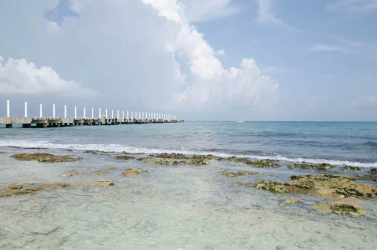 Catch Playa del Carmen