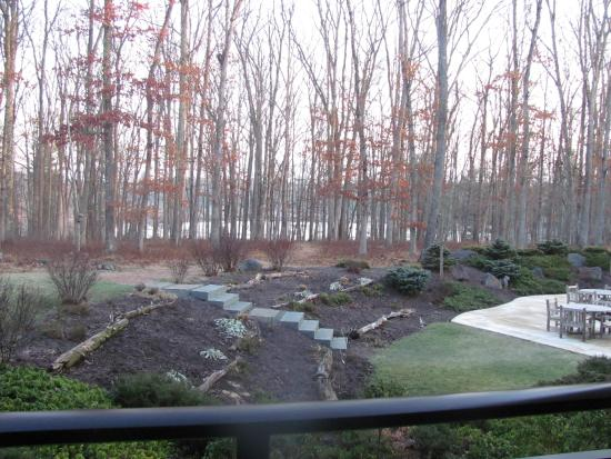The Lodge at Woodloch: View from my room. What a beautiful site to see early in the morning..