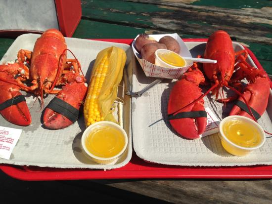 Georgetown, ME: Soft Shell and a Hard Shell Lobster