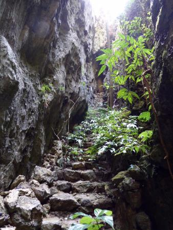 Baribari Rock