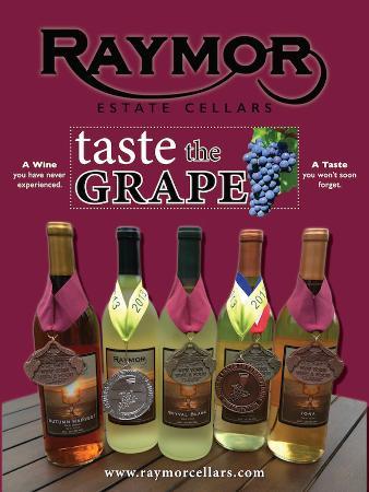 Bloomfield, Nowy Jork: Award Winning Wines