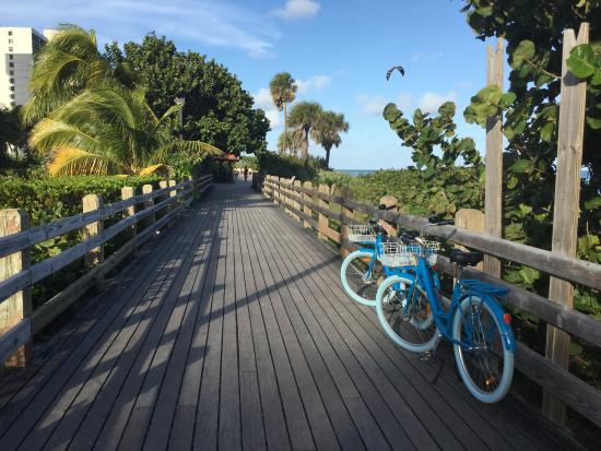 Royal Palm South Beach Miami A Tribute Portfolio Resort Hotel Bikes
