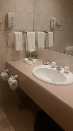 Bathroom Vanity area - plenty of bench space and towels etc