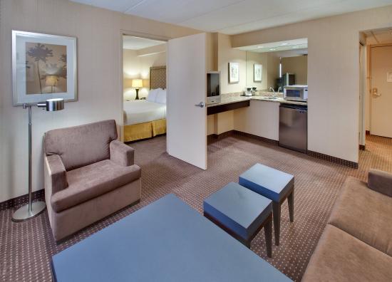 Holiday Inn Express Chicago Palatine: Holiday Inn Express Palatine-Arlington Hts Chicago NW-Jr. suite