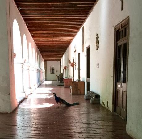 Museo de Arte Colonial de San Francisco