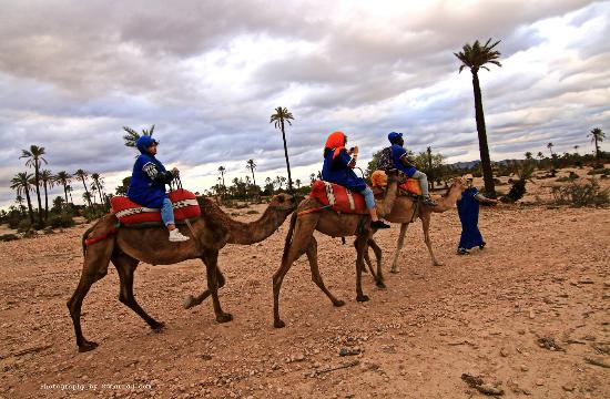 Morocco Holiday Planner- Day Trips