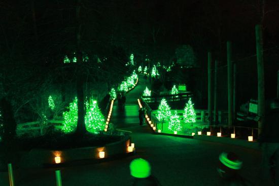 xmas - Picture of Busch Gardens Williamsburg, Williamsburg - TripAdvisor