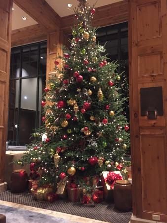 park hyatt beaver creek resort and spa awesome christmas tree - Awesome Christmas Trees