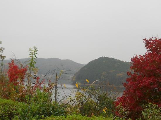 Iruka Pond : 明治村から