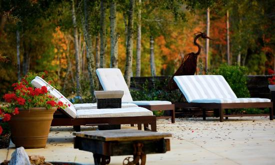 Deer Lake Lodge Resort \u0026 Spa: Poolside beds & Poolside beds - Picture of Deer Lake Lodge Resort \u0026 Spa Montgomery ...