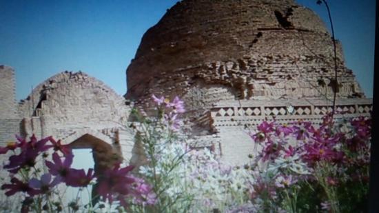 Buddhist Monastery Ajina-Tepa照片