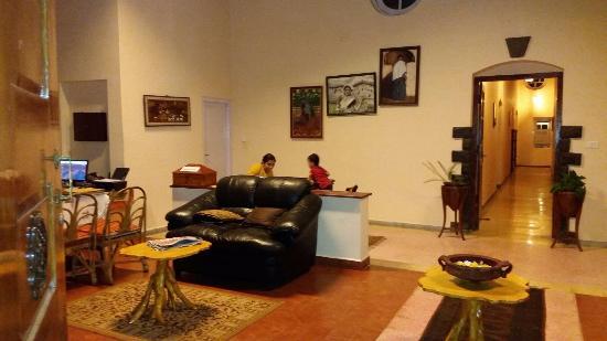 Teanest: reception area