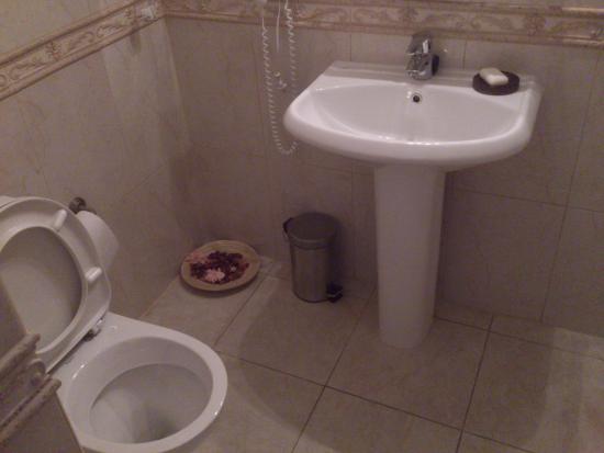 Davidov Guest House: Раковина