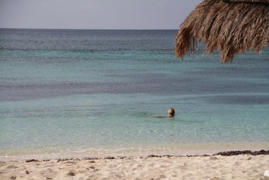 Allegro Cozumel: Beach at the Allegro