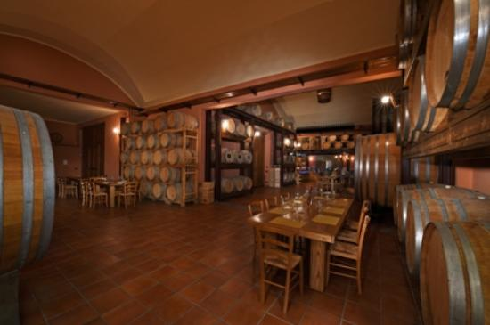 La Morra, Italien: The winery