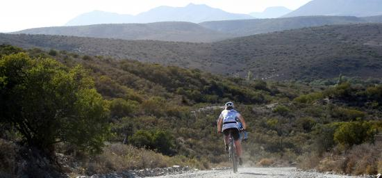 Tri Sport - Day Tours