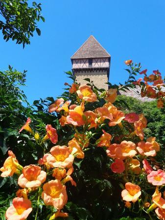 Gers, France : Sabazan