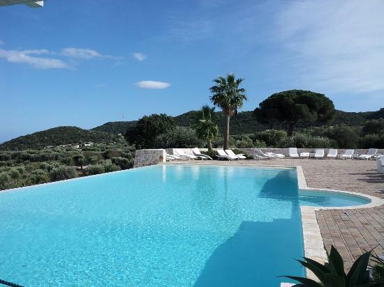 Zona piscina foto di masseria santa teresa monopoli for Piscina santa teresa