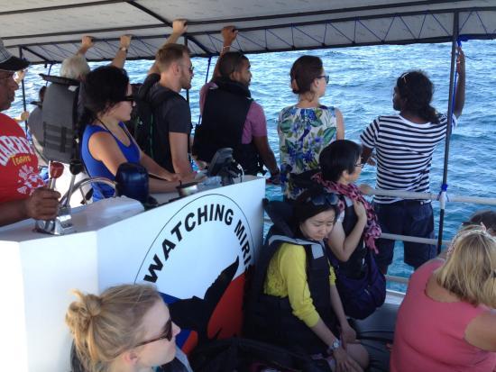 Mirissa, Sri Lanka: Geeth boat