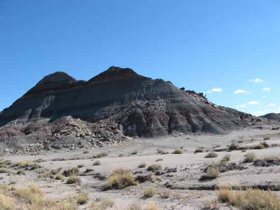 Painted Desert Picture Of Petrified Forest National Park