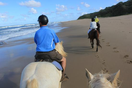 Marina Beach, Zuid-Afrika: Follow the leader - beach ride at Selsdon Park Estate