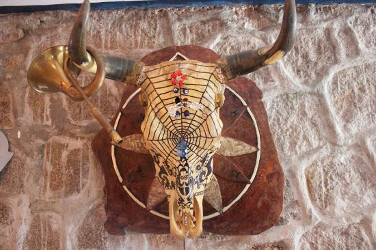 Остров Маэ, Сейшельские острова: Dream catcher cows skull at Pirates Cove, Mahe Island, Seychelles