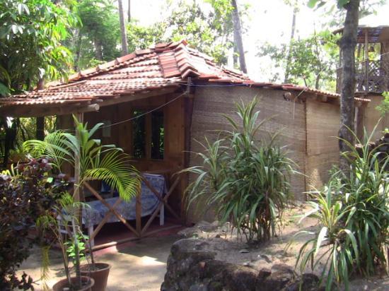 Sevas Huts & Cabanas: Hütte