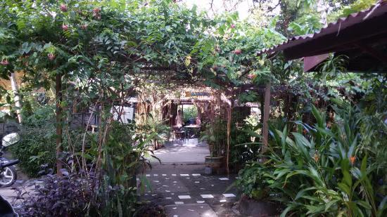 Gecko Guesthouse Langkawi : Průchod areálem guesthousu Gecko