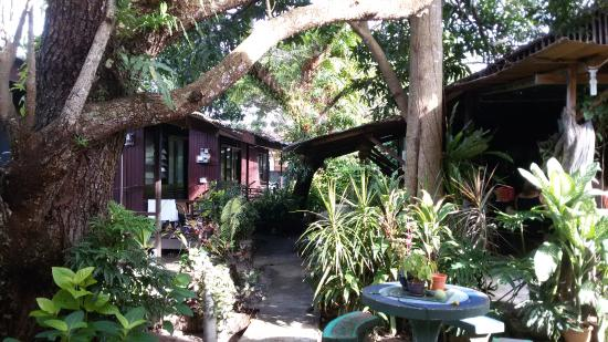 Gecko Guesthouse Langkawi : Jedna z chatek guesthousu Gecko