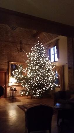 Warren Farm Lodge: Warren Lodge Christmas Tree