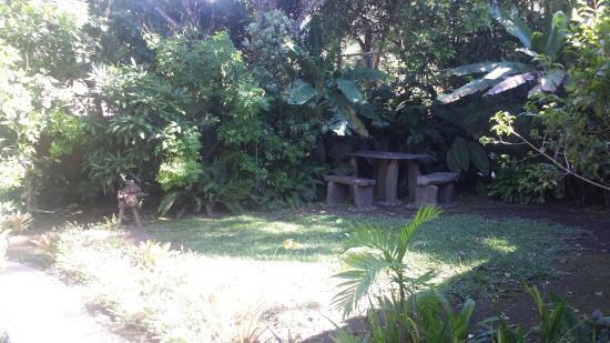Monteverde Rustic Lodge: Beautiful garden outside each room
