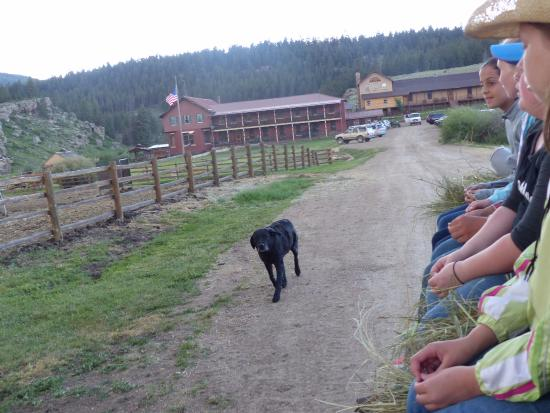 Waunita Hot Springs Ranch: The ranch