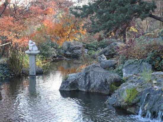 Giardino giapponese picture of orto botanico di roma for O giardino di pulcinella roma