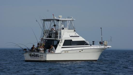 Sea Angel Charters
