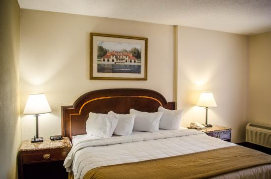 Quality Inn & Suites: 1 King Bed Accessible