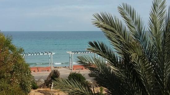 Hotel Flamingo Beach: Vue de la chambre