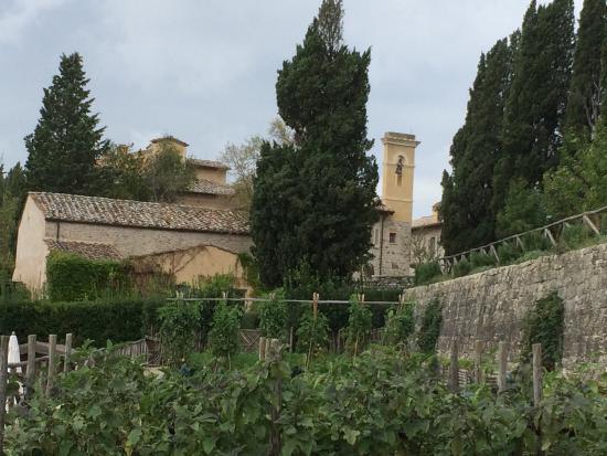 Rosewood Castiglion Del Bosco: The grounds