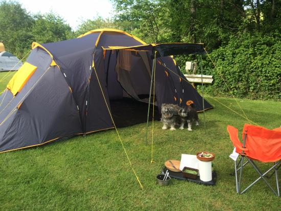Combe Martin, UK: Spacious pitch for a family size camp, BBQ and our dogs too!