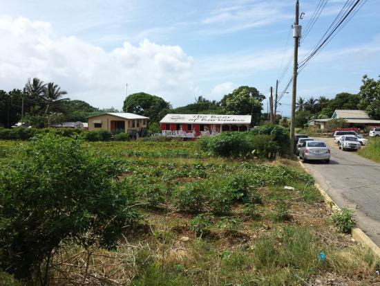 Rock Dundo, Barbados: Chris' Place 30/11/2015