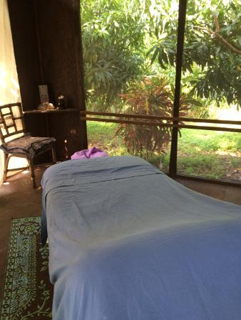 Capitão Cook, Havaí: Beautiful, calming space in the midst of mango trees