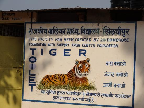 Tiger Toilet Accessoires : Wwf report links sumatra deforestation to toilet paper
