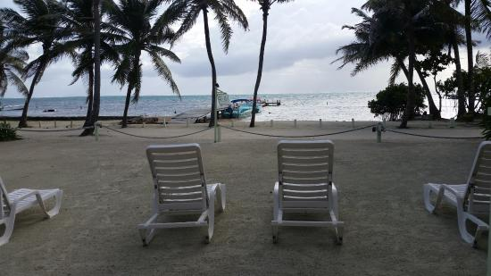 Caye Casa: The view from the front door!