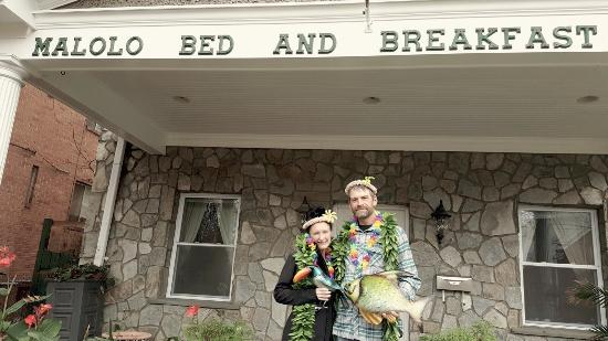 Malolo Bed and Breakfast: photo2.jpg