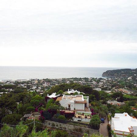 Poggio del Sole: Вид с террасы