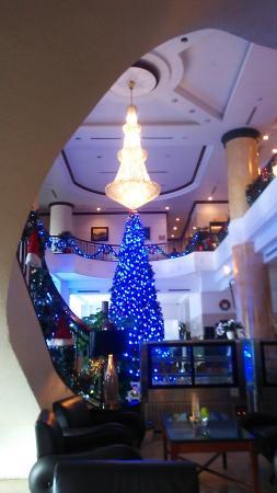 picture of fortuna hotel hanoi hanoi tripadvisor rh tripadvisor co nz