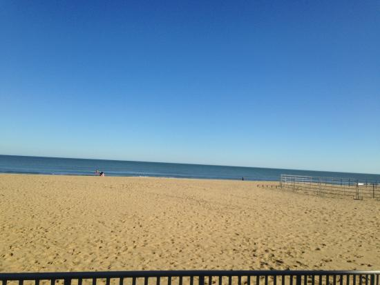 It Can T Be December In Virginia Beach
