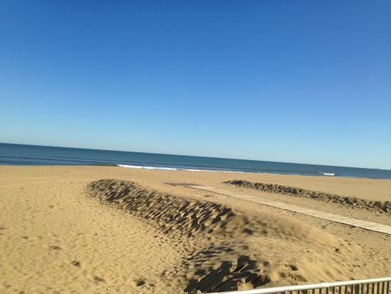 Virginia Beach Beautiful In December Virgina Va