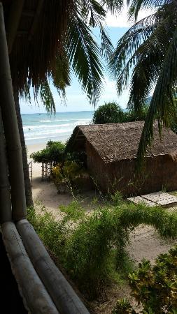 Jungle Beach VietNam: 20151211_110159_large.jpg