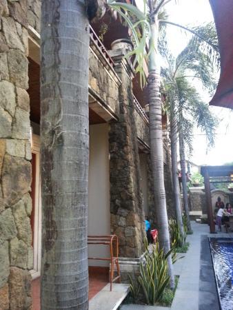 Sindhu Mertha Guest House: hotel